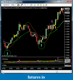 shodson's Trading Journal-20100616-double-entry3.png