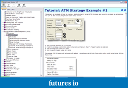 ATM for ninja trader / Example & Videos-helpmanual002.png