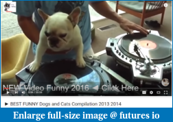 Amazing-dog_making_music_2016-04-27_1859.png