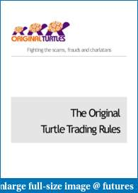 THE GAME-turtlerules.pdf