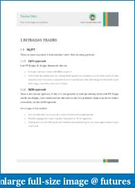 Trader Dale - intraday levels daily-position-management.pdf