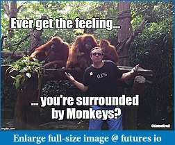 "Anton Kreil Annihilates Retail Brokers and ""Trading Educators""-anton-monkey.jpg"