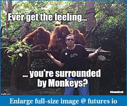 Click image for larger version  Name:anton monkey.jpg Views:109 Size:97.9 KB ID:234185