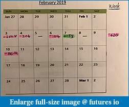 Feb 2019 Trading Journal - BougieNT8-feb10_calendar.jpg