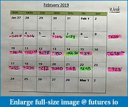 Feb 2019 Trading Journal - BougieNT8-wk3_calendar.jpg