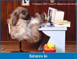 Прайс Экшин и Понимание Рынка-rabbit.png