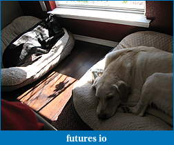 Trading the 6E Old School, With a Twist-molly-tyler-sleeping-001.jpg